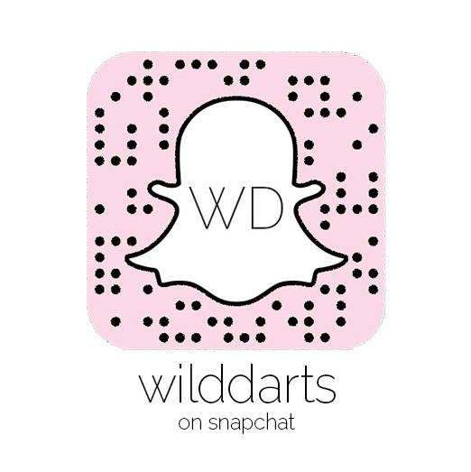 wilddarts snapchat edm